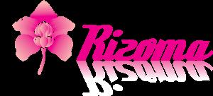 LogoRizoma_magenta_HQ
