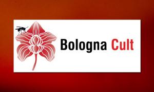 bologna-cult-periodico-rizoma
