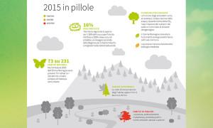 ARPAE-emilia-romagna-infografica-dati-ambientali-2015-p133-sfondo