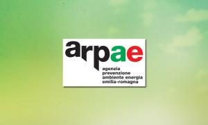 arpae-rizoma-logo-portfolio