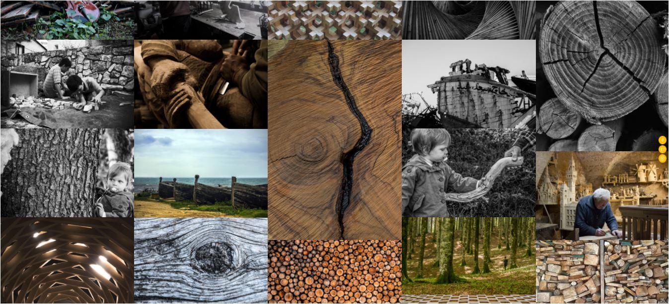 Rilegno a Ecomondo con il concorso #RilegnoPhotoContest