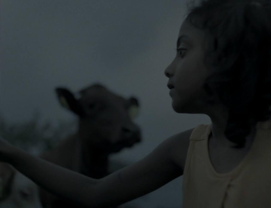 10 anni di cinema migrante a Visioni Italiane